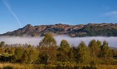 Ben A'an (Sarah-86) Tags: nikond810 landscape scotland autumn mist trossachs highland trees benaanwoodland