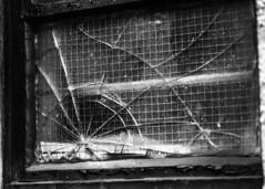 Cracks (--Kei--) Tags: nikon d810 tokina tokina100mmf28 100mm f28 atx atxprod newport casnewydd cymru wales glass cracks shattered blackandwhite blackwhite monochrome mono bw