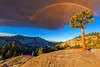 Somewhere under the Rainbow (Godspeed70) Tags: yosemite highsierra pine olmsted point rainbow sky clouds thunderstorm mountain sunshine california