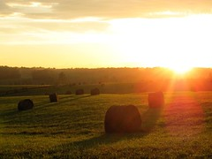 The End of Another Day (David Hoffman '41) Tags: light sunset sky nature field rural landscape virginia spring day ray quiet peace sundown angle dusk farm south country tranquility calm hay agriculture bales fodder charlottecounty