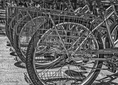 Wheels for Share (katsrcool (Kool Cats Photography)) Tags: blackandwhite oklahoma bicycle artistic spokes wheels transportation pedals share hdr oklahomacity yabbadabbadoo oklahomacitymetro automobilealley traveloklahoma canont3i canon24105f4lisusmlens shareabike