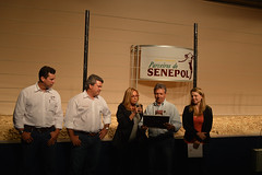 """Parceiros do Senepol 2013 • <a style=""""font-size:0.8em;"""" href=""""http://www.flickr.com/photos/92263103@N05/9134425961/"""" target=""""_blank"""">View on Flickr</a>"""