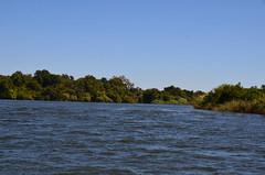 Zambezi River scene near Royal Chundu Island Lodge (4) (Prof. Mortel) Tags: zambia zambeziriver royalchundulodge