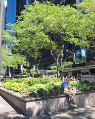 POPS003: Public Plaza, 1 State Street - One State Street Plaza, Financial District, Downtown Manhattan, New York City (jag9889) Tags: 1statestreet 1970 3 architecture area building city concession downtown financialdistrict lowermanhattan manhattan ny nyc newyork office onestatestreetplaza owned popos pops park plaza privately privatelyownedpublicspace public publicspace resolution schroderbuilding skyscraper space tower variance zoning 2013 jag9889 niouc