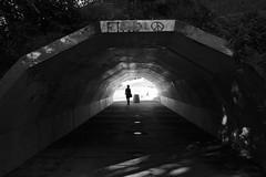 La lumière au bout du tunnel / The light at end of tunnel (!Michel Grenier!) Tags: leica light bw backlight montréal lumière montreal rangefinder wideangle tunnel nb montroyal contrejour mountroyal m9 mseries grandangle mirrorless versantnord northernslope voigtlandercolorskopar25mmf4