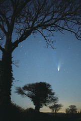 Dawn Comet (Nick_White_Photography) Tags: trees sky night stars space tail historic astronomy comet cosmic cosmos hale solarsystem bopp halebopp comethaleboppastronomynightskysolarsystemstarstaildust comethaleboppastronomynightskysolarsystemstarstaildustplasmagastreesspacelightsciencenaturebuckinghamshireengland