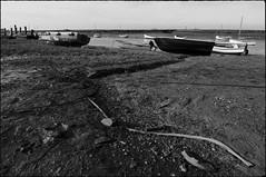 _DSC3319-a (andy.sheppard) Tags: bw white black boats weeds nikon mud norfolk gravel burnhamoverystaithe d700 ithinkimayhavefoundmybooktitle