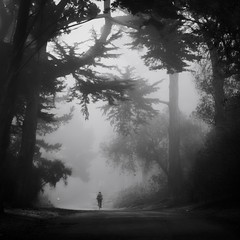 Cyclist in the Fog 1 (M. Kamran Meyer) Tags: goldengatepark park trees blackandwhite bw woman mist girl bike misty fog lady forest haze cyclist shadows path foggy traveller trail biker bicyclist cypress hazy rider gravel drizzle drizzling