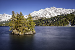Lej da Segl (PhiiiiiiiL) Tags: autumn mountain lake mountains berg landscape schweiz switzerland nikon day suisse herbst lac insel berge clear mountainlake bergsee isle engadin sils engiadina nd30 silsersee d800e