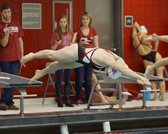 University of Arkansas vs Nebraska State University Swimming (Garagewerks) Tags: woman college ex sport female swimming nebraska university state sony sigma os apo arkansas f28 dg a77 70200mm hsm views200