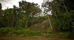 Yaxchilan desde el rio - I (Uriel Akira) Tags: rock stone mexico ruins selva jungle ruinas chiapas mayas roca piedra yaxchilan mayans