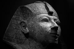 Egyptian head stone statue (Xiphoid8) Tags: newyorkcity history museum museumofart met artmuseum relics artifacts themet metropolitanmuseumofart ancientegypt headstatue museumpiece nycmuseum metnyc egyptianhead metnewyorkcity themetnyc egyptianheadstatue stoneheadstatue