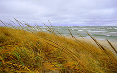 Lake Michigan (mswan777) Tags: sky lake seascape west color fall beach nature grass clouds landscape sand nikon waves michigan dunes stjoseph lakemichigan greatlakes lakeshore polarizer circular d5100