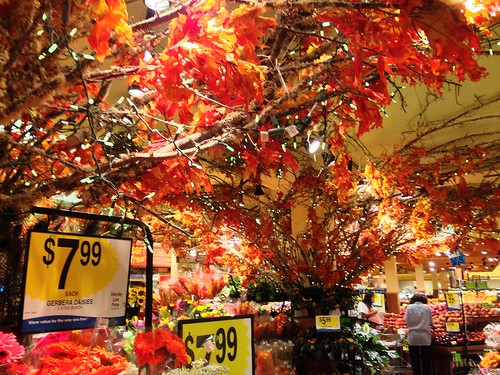 2013 YIP - Day 243: Fall arrives (early) at QFC
