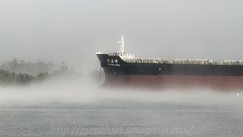 Fog on the Bow