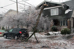 Ice storm damage (Canadian Pacific) Tags: trees winter toronto ontario canada storm cold tree ice broken lines electric frozen wire branch power crystal branches cable canadian system line wires fallen damage icicle poweroutage blackout wonderland icicles freezingrain sleet wintry downed crystalized torontohydro crystalised aimg2157