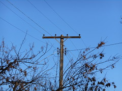 Northern States Power - Sioux Falls, SD (NDLineGeek) Tags: 4160v nsp