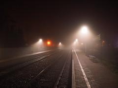 (xelladrillox) Tags: winter fog night december shots foggy kitlens olympus handheld f28 omd em1 1240mm