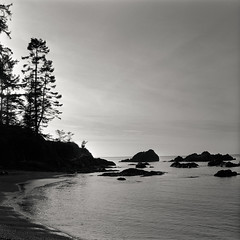 Rosario Beach as the sun falls away (that analogue guy) Tags: washington solitude bronica 1200 pugetsound rodinal standdevelopment agfarodinal sqai rosariobeach deceptionpassstatepark shanghaigp3 film:iso=100 shanghaigp3100 developer:brand=agfa developer:name=agfarodinal film:brand=shanghai film:name=shanghaigp3100 zenzanon80mmf28ps filmdev:recipe=7382 asthesunfallsaway