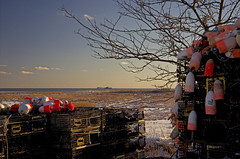 Lobster pots await Spring along the Sound (Bob Gundersen) Tags: ocean blue winter sea orange usa brown white snow water landscape coast photo interesting nikon flickr waterfront image shots connecticut country shoreline picture newengland ct places lobster scenes trap buoy lobsterpound gundersen longislandsound guilford con