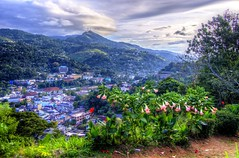 Kandy Top (Picsnapr) Tags: city blue trees sky green yellow clouds town flora hills srilanka bushes birdseyeview hdr kandy
