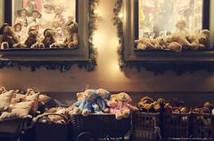 En vadrouille ~ Berlin, face A (Marie l'Amuse) Tags: bear christmas street city light tree berlin cute window childhood shop night germany toy nikon soft branch magasin display sweet lumière noel stuff fir rue nuit fenêtre ville jouet sapin vitrine ours mignon peluche branche enfance doux allemangne d7000