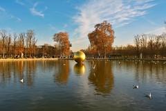 "Paris: Les Tuileries Bassin Octogonal / ""The Golden Sphere"" ( James Lee Byars (1992-2012) ) (Pantchoa) Tags: park autumn trees sculpture paris france water automne nikon gull tokina otoo tuileries jardindestuileries mouettes wideanglelens ultrawideangle d7100 bassinoctogonal ultragrandangle jamesleebyars objectifgrandangle thegoldensphere sphredore tokinaaf1228mmf4 tokinaatx1228f4prodx"