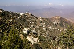 Jizan Fayfa Mountain-4892 (Androtopia) Tags: saudiarabia jizan
