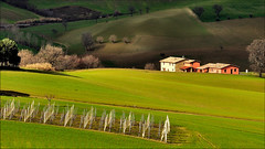 Giro di vento - San Severino Marche (Luigi Alesi) Tags: light shadow italy verde green nature landscape nikon scenery san italia raw country ombra natura severino campagna di fields luce marche paesaggio giro vento macerata agriturismo campi d90 mygearandme mygearandmepremium mygearandmebronze mygearandmesilver mygearandmegold mygearandmeplatinum mygearandmediamond photographyforrecreationeliteclub