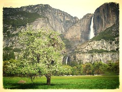 Yosemite Fall (lienhp) Tags: photocontesttnc12