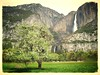 Yosemite Fall (lienhp) Tags: photocontesttnc12