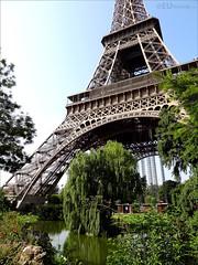 Missed gardens near the Eiffel Tower