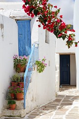 Prodromos, Paros Island, Greece, 2014 (Photox0906) Tags: street door flowers blue shadow red white house stairs fleurs rouge island sunny ombre bleu greece pots porte ruelle maison blanc grce paros cyclades mediterraneansea pavs escaliers le marches lumineux mditerrane bougainvilliers mditerranen prodromos pavestones merege