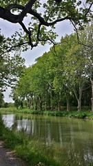 Along the Canal du Midi near Carcasonne, France (Randy Durrum) Tags: water canal eu samsung dailyfrenchpod durrum leuropepittoresque snapseed flickrandroidapp:filter=none