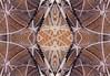 Pollock's Web 2 (JeffStewartPhotos) Tags: toronto ontario canada mirror google negative photowalk mirrored reversed 2014 digitalmirror brookfieldplace digitallymirrored sampollocksquare photoday14 photodayaroundtheworld photodaytoronto 31may2014