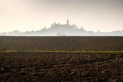 Skyline (Vanda Guazzora) Tags: terra arata profilo orizzonte paese collina astigiano piemonte italia