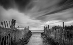 Path to freedom (Mihai Penghios) Tags: beach bw clouds path black white long exposure devon warren dawlish south national nature reserve teignmouth teignbridge strechedsky