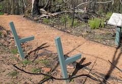 160925_Warrumbungles_5708.jpg (FranzVenhaus) Tags: trees creek countrybush plants cliffs australia mountains warrumbungles nsw water newsouthwales wilderness rocks aus