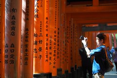 Fushimi Inari Shrine  Kyoto () Tags:    kyoto olympus penf  japan panasonic dg 425mm f12