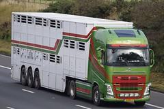 26-BFG-3  Van de Wetering (highlandreiver) Tags: 26bfg3 van de wetering netherlands volvo truck lorry livestock haulage transport wagon m6 wreay carlisle cumbria england