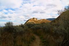(rebecca.ramsthaler) Tags: hills desert sagebrush path explore bc outdoors