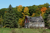 A collapsing former homestead in Quyon, Québec (Ullysses) Tags: quyon québec canada pontiac municipalityofpontiac homestead maisonfantome autumn automne fallcolors northonslow