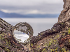 Crystal Ball in the Tree (Brenda Gooder) Tags: crystalball lake landscape