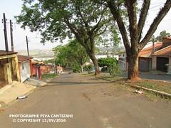 AVENIDA DONATO FLÔRES TATUÍ - SP (PHOTOGRAPHE PIVA CANTIZANI) Tags: avenida donato flôres tatuí sp