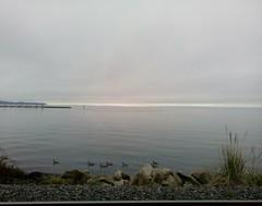 The silver lining... (Beeke...) Tags: minimalism ocean solitude canada horizon explore78