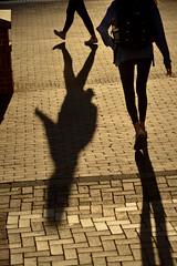 CAMPUS.Fall.4335 (ncsuweb) Tags: shadow student sunny backpack bricks walk walkers women females
