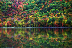 Peace, Serenity and Tranquility for all who seek it... (Captions by Nica... (Fieger Photography)) Tags: reflections reflection water landscape lake nature forest fall foliage autumn outdoor serene quebec canada
