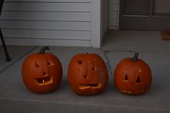 (laur-elizabeth) Tags: indoor pumpkin jackolantern halloween