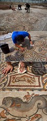 #A massive, well-preserved; 1,700 year-old Roman mosaic was recently unearthed while performing city sewer construction.Date unknown. [7211860] #history #retro #vintage #dh #HistoryPorn http://ift.tt/2gIee96 (Histolines) Tags: histolines history timeline retro vinatage a massive wellpreserved 1 700 yearold roman mosaic was recently unearthed while performing city sewer constructiondate unknown 7211860 vintage dh historyporn httpifttt2giee96