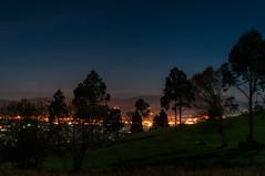 Luces en la noche (ccc.39) Tags: asturias oviedo noche nocturna night luces rboles prado ciudad